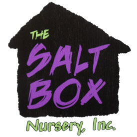 salt-box-logo