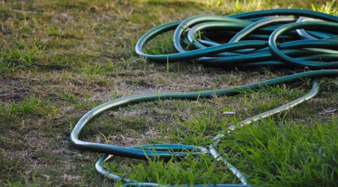 Reviving Your Lawn